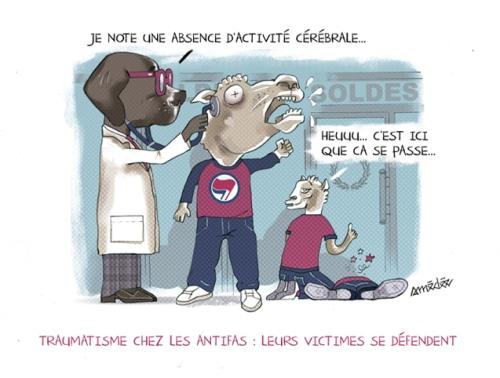 amedee-dessin-antifas